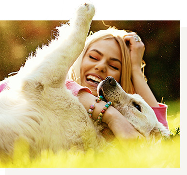 Happy and healthy dog with owner photo